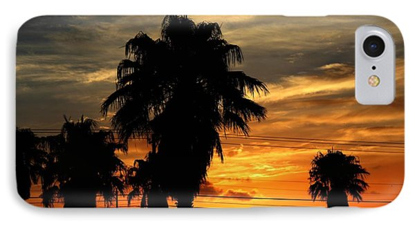 Palm Tree Silhouette IPhone Case by Candice Trimble