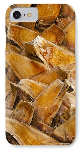 Palm Tree Trunk Detail Phone Case by Bob Phillips