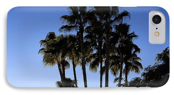 Palm Trees IPhone Case by Chris Thomas