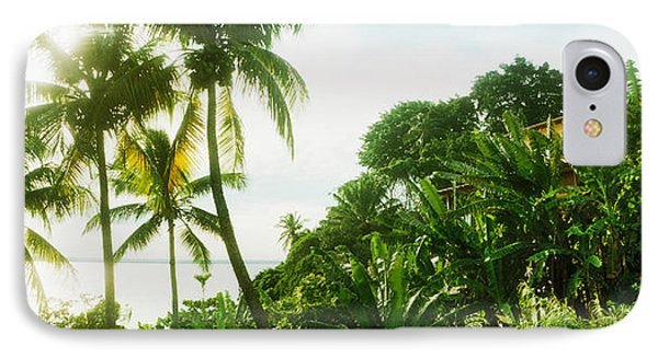 Palm Trees Covering A Small Bungalow IPhone Case by Panoramic Images