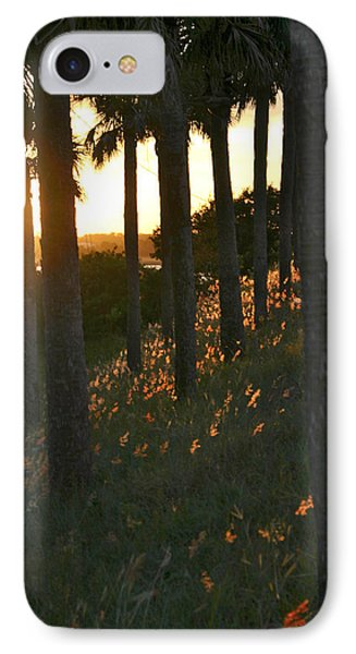 Palm Trees In Silhouette IPhone Case