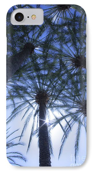 IPhone Case featuring the photograph Palm Trees In The Sun by Jerry Cowart