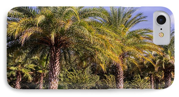 Palm Trees Of Florida IPhone Case by Zina Stromberg
