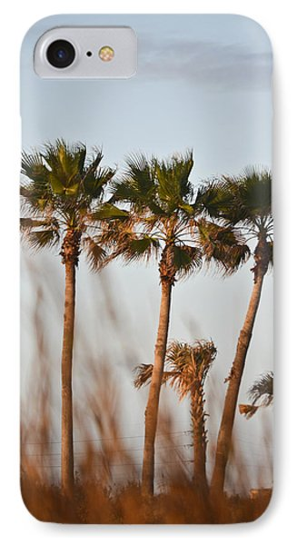 Palm Trees Through Tall Grass IPhone Case by Allen Sheffield