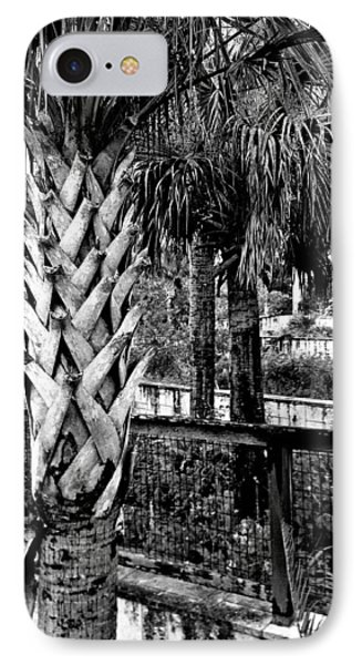 Palms And Walls In Black And White IPhone Case by K Simmons Luna