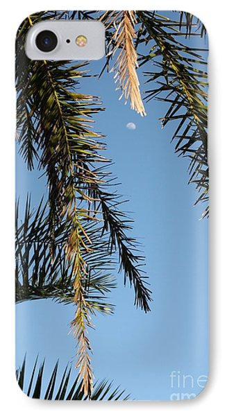 Palms In The Wind Phone Case by AR Annahita