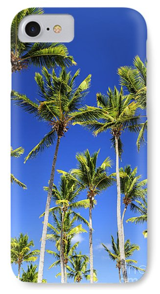 Palms On Blue Sky IPhone Case