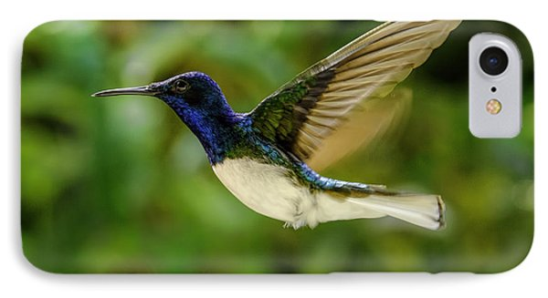 IPhone Case featuring the photograph Panama Hummingbird by Rob Tullis
