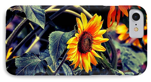 IPhone Case featuring the photograph Pancoastburg Sunflowers by Beth Akerman
