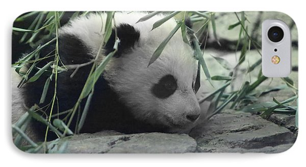 Panda Cub Bao Bao Phone Case by Jack Nevitt