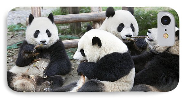 Pandas IPhone Case by King Wu