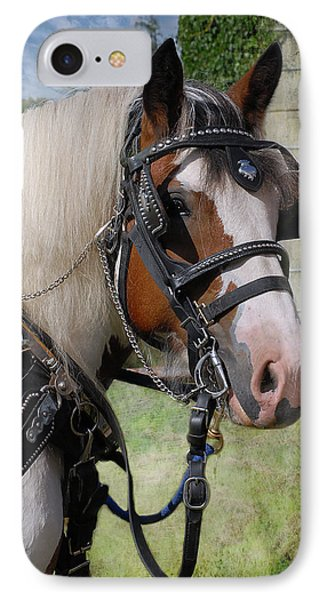 Pandora In Harness Phone Case by Fran J Scott