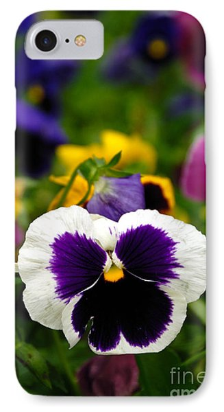 Pansies Phone Case by Amy Cicconi