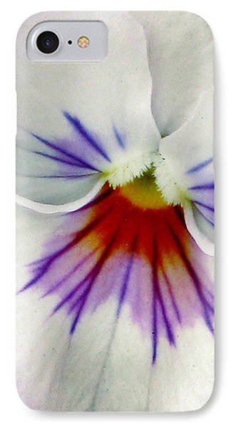 Pansy Flower 11 IPhone Case by Pamela Critchlow