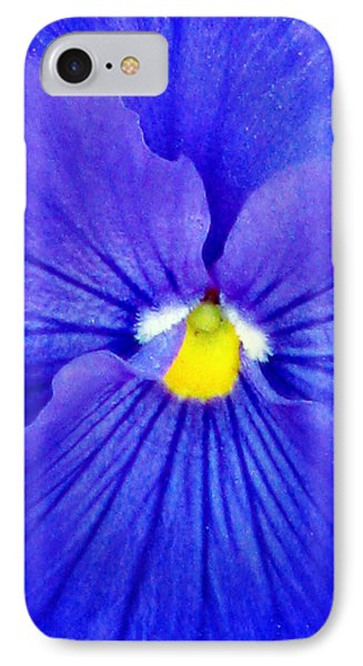 Pansy Flower 37 IPhone Case by Pamela Critchlow