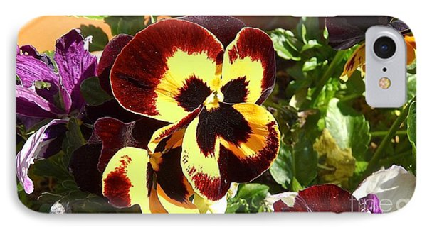 Pansy Time Phone Case by Julie Koretz