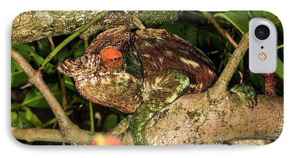 Panther Chameleon (furcifer Pardalis) IPhone Case