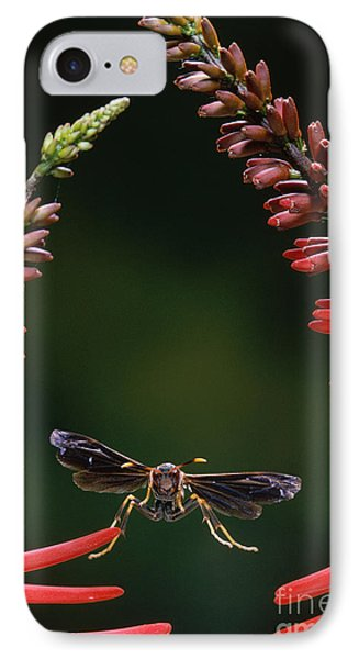 Paper Wasp In Flight Phone Case by Stephen Dalton