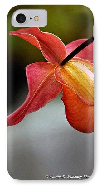 Paphiopedilum Orchid - Slipper Orchid IPhone Case