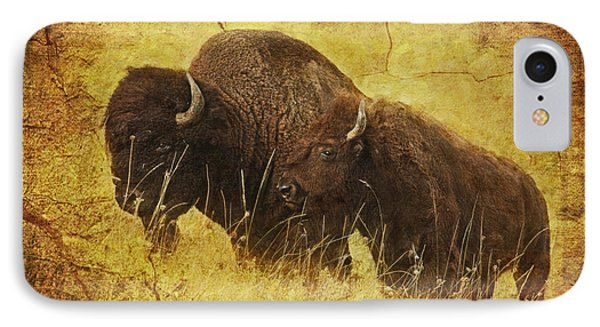 Parent And Child - American Bison IPhone Case