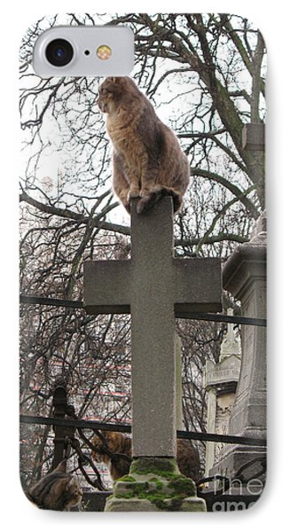 Paris Cemetery Cats - Pere La Chaise Cemetery - Wild Cats On Cross IPhone Case by Kathy Fornal