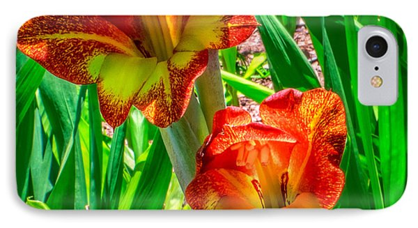 IPhone Case featuring the photograph Parrot Gladiolus by Rob Sellers