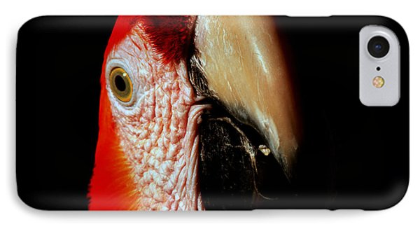 IPhone Case featuring the photograph Parrot by Gunter Nezhoda