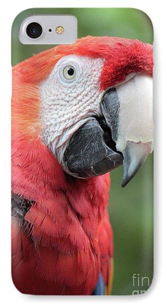 Parrot Profile Phone Case by Carol Groenen