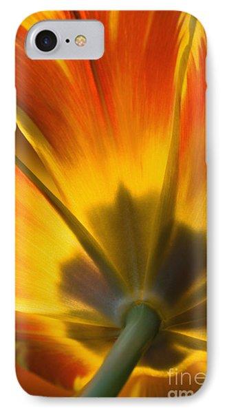 Parrot Tulip - D008405 Phone Case by Daniel Dempster