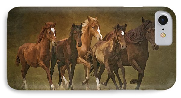 IPhone Case featuring the photograph Paso Peruvians by Priscilla Burgers