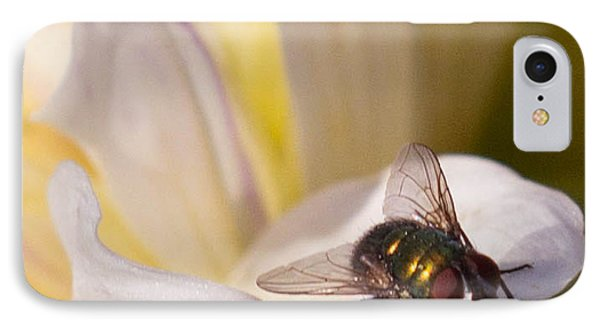 IPhone Case featuring the photograph Passenger by Cathy Donohoue