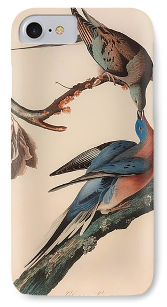 Passenger Pigeon IPhone Case by Mountain Dreams