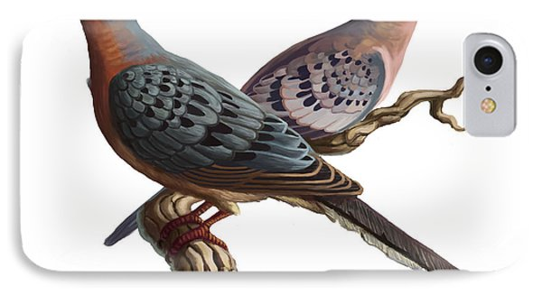Passenger Pigeon  Phone Case by Spencer Sutton