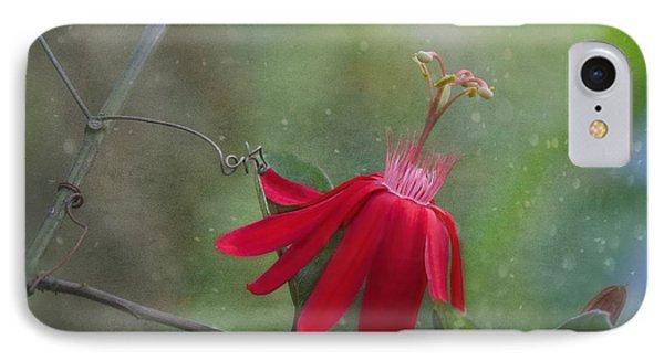 Passiflora Flower Phone Case by Kim Hojnacki
