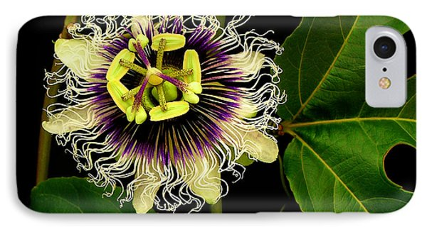 Passion Flower Phone Case by James Temple