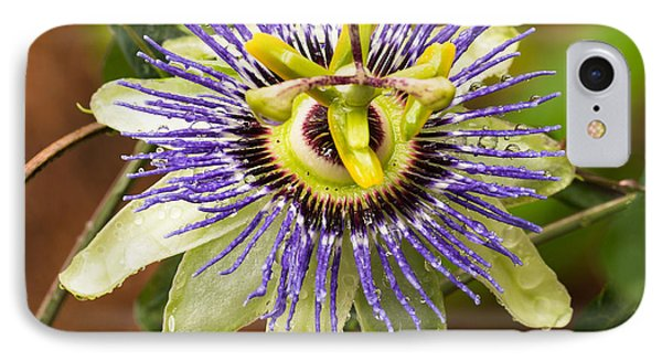 IPhone Case featuring the photograph Passion Flower by Patricia Schaefer
