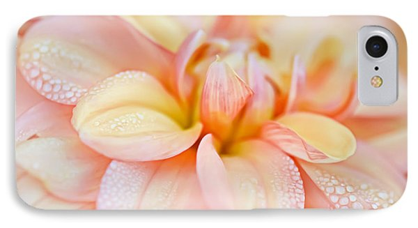 Pastel Petals And Drops IPhone Case by Julie Palencia