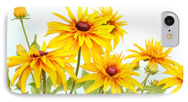 Patch Of Black-eyed Susan IPhone Case by Steve Augustin