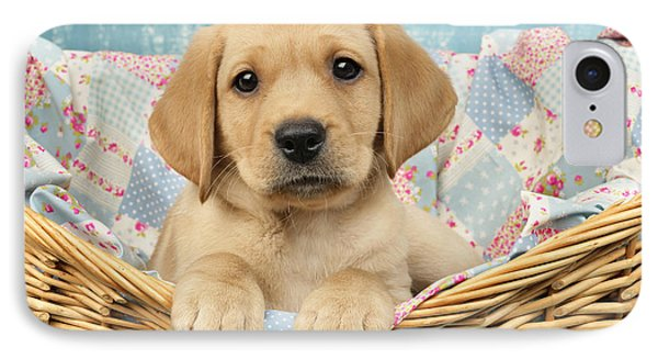 Patchwork Puppy Dp793 Phone Case by Greg Cuddiford