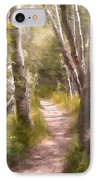Path 1 IPhone Case by Pamela Cooper