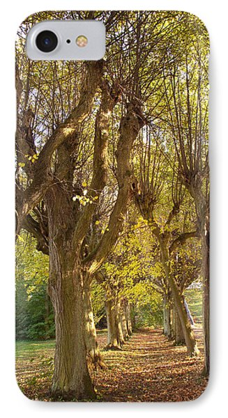 Path 4- Ostromecko Gardens IPhone Case