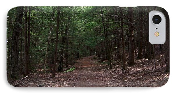 Path In The Woods IPhone Case by Catherine Gagne