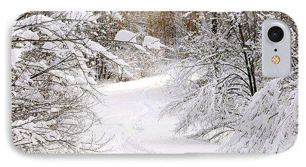 Path In Winter Forest Phone Case by Elena Elisseeva