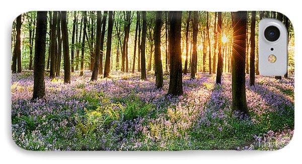 Sunrise Path Through Bluebell Woods IPhone Case