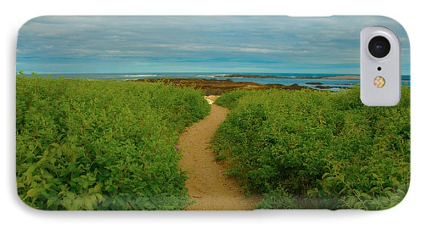 IPhone Case featuring the photograph Path To Blue by Brenda Jacobs