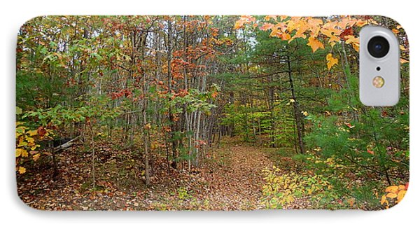 Path To The Woods IPhone Case by Lois Lepisto