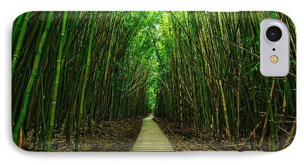 Path To Zen IPhone Case by Jamie Pham
