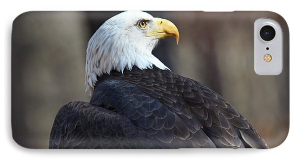 Patriotic Pose IPhone Case by Geri Glavis