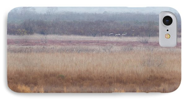 IPhone Case featuring the photograph Paynes Prairie White Birds by Paul Rebmann
