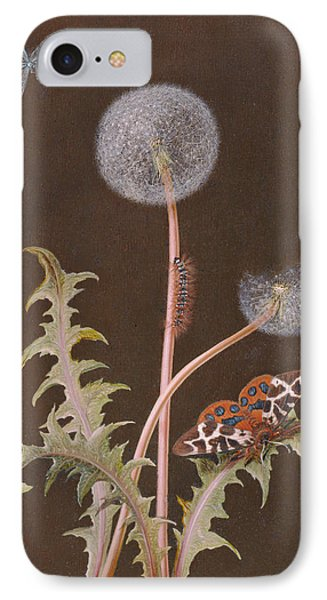 Pd.380-1973 Dandelion With Insects IPhone Case